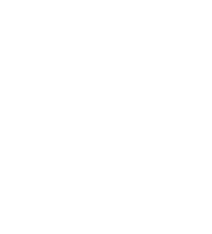 The Salvation Army logo in white
